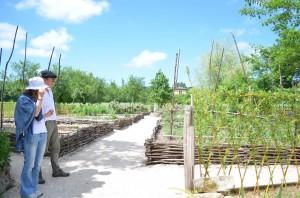 jardin abbaye bonnefont 14