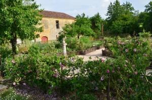 jardin abbaye bonnefont 7